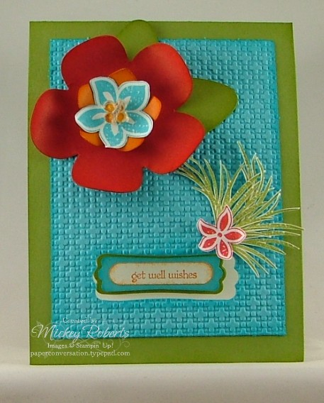 Tropical_Party_Get_Well_Front1