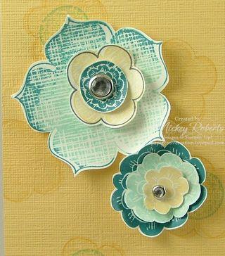 Closeup_Flowers