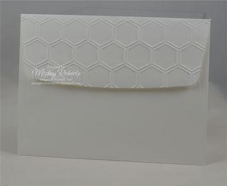 Shaker_Card_Envelope