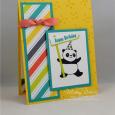 Party Pandas -- Happy Birthday