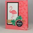 Pop of Paradise -- Flamingo Hello