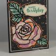 Rose Wonder -- Happy Birthday