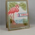 Fabulous Flamingo -- Thanks