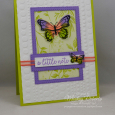 Butterfly Gala -- A Little Note